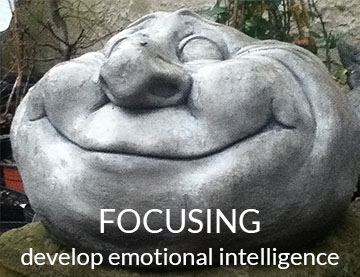 Focusing - Develop Emotional Intelligence